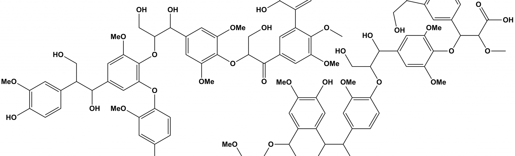 lignin
